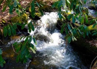 creek-falls