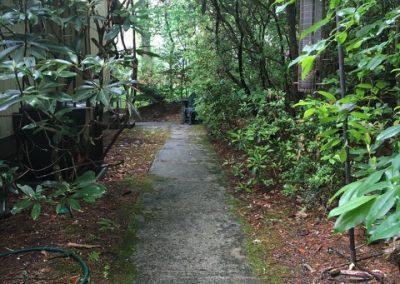 179Cardinal-Sidewalk